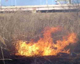 火災の定義