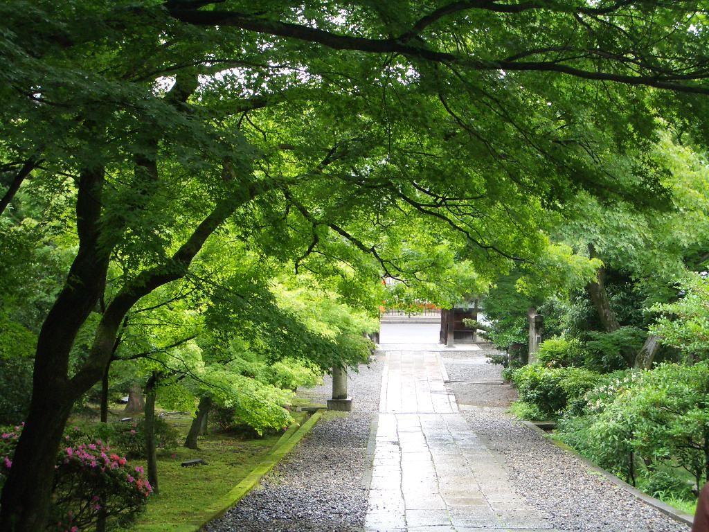 京都に行って来ました♪ −3−